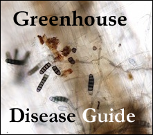 Greenhouse Disease Guide